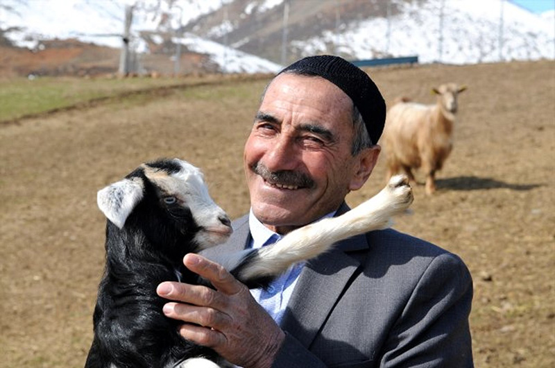 Bingöllü Çoban