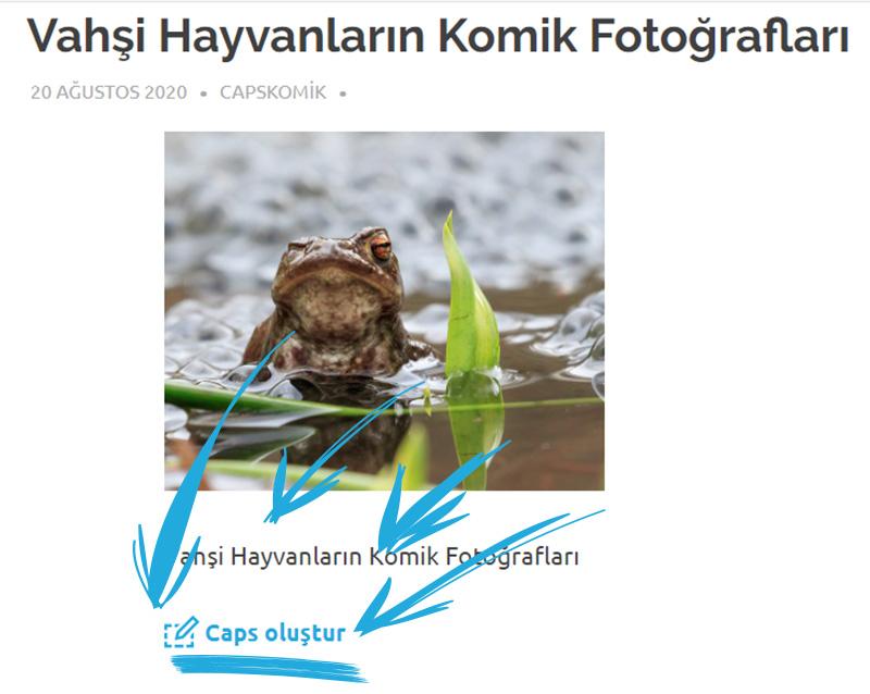 Komik Fotoğraflardan Nasıl Caps Yaparım?