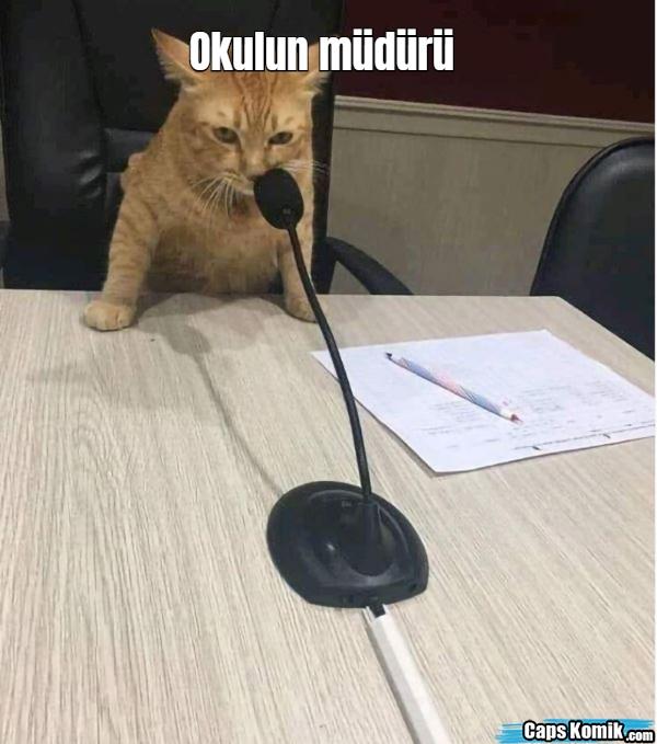 Okulun müdürü