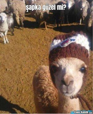 şapka güzel mi?