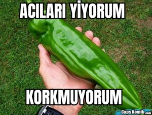 ACILARI YİYORUM KORKMUYORUM