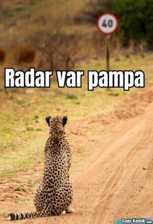 Radar var pampa