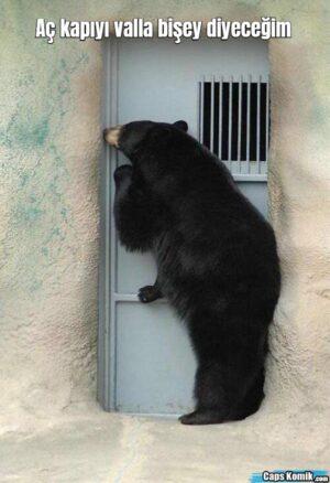 Aç kapıyı valla bişey diyeceğim