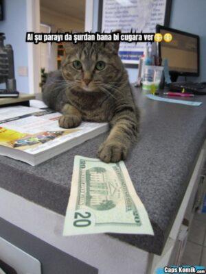 Al şu parayı da şurdan bana bi cugara ver??
