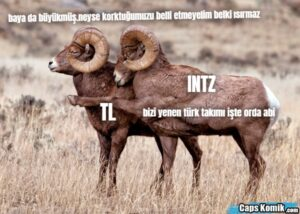 bizi yenen türk takımı işte orda abi INTZ TL baya da büyükmüş.neyse korktuğumuzu belli etmeyelim belki ısırmaz