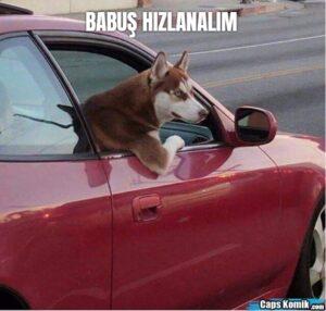 BABUŞ HIZLANALIM