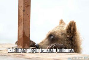 Bak lütfen google translate kullanma