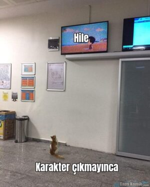 ♡Hile♡ Karakter çıkmayınca Hile