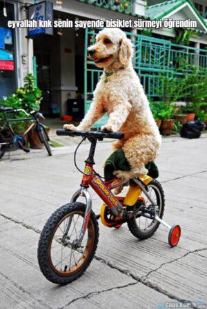 eyvallah knk senin sayende bisiklet sürmeyi öğrendim