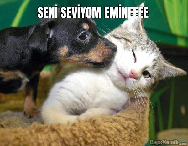 SENİ SEVİYOM EMİNEEEE