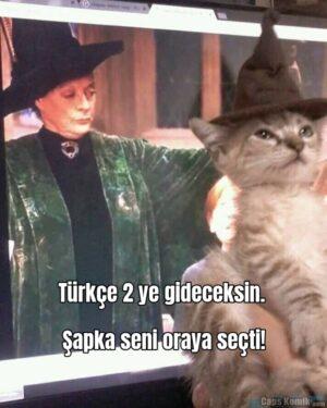 Türkçe 2 ye gideceksin. Şapka seni oraya seçti!