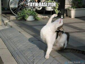 YAYIN BASLIYOR