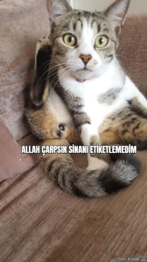 ALLAH ÇARPSIN SİNANI ETİKETLEMEDİM