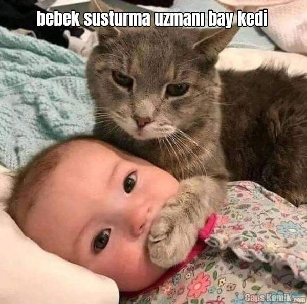 bebek susturma uzmanı bay kedi