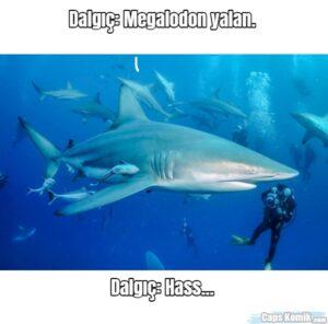 Dalgıç: Megalodon yalan…. … … … … … … … … … … … Dalgıç:…
