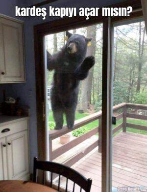 kardeş kapıyı açar mısın?