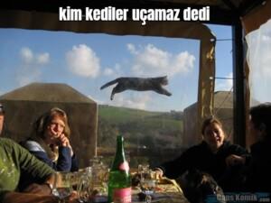 kim kediler uçamaz dedi