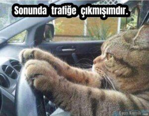 Sonunda trafiğe çıkmışımdır.