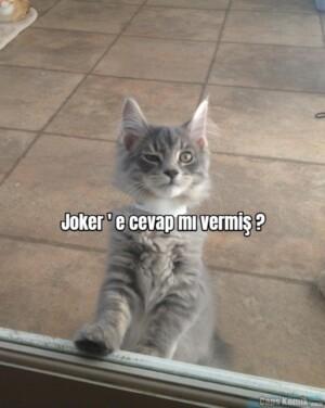 Joker ' e cevap mı vermiş ?