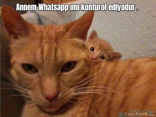 Annem Whatsapp ımı konturol ediyodur .