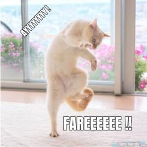 AYYYYYYYY !… FAREEEEEE !!
