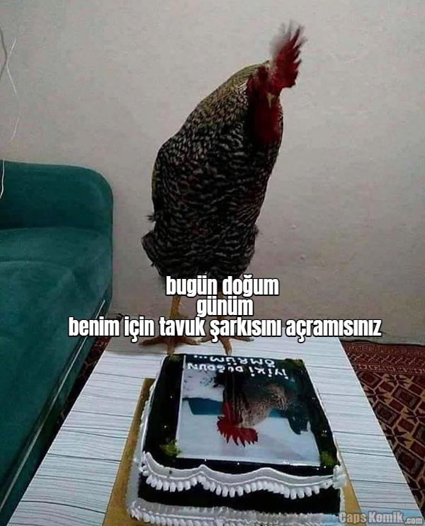 bugün doğum günüm benim için tavuk şarkısını açramısınız