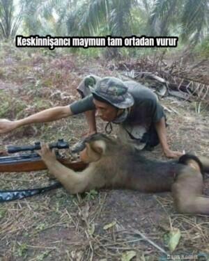 Keskinnişancı maymun tam ortadan vurur