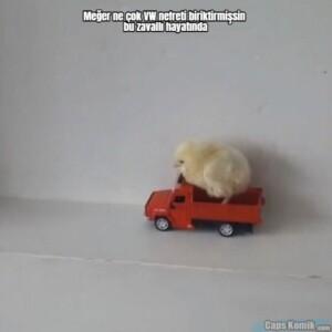 Meğer ne çok VW nefreti biriktirmişsin bu zavallı hayatında