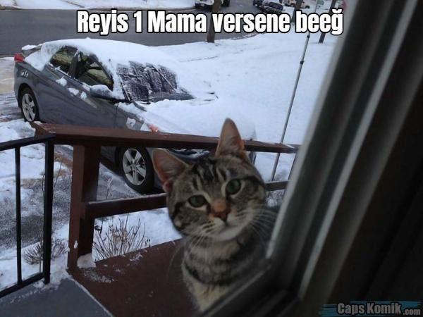 Reyis 1 Mama versene beeğ