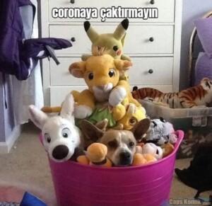 coronaya çaktırmayın