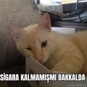 SİGARA KALMAMIŞMI BAKKALDA