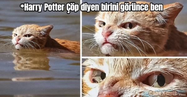 *Harry Potter Çöp diyen birini görünce ben